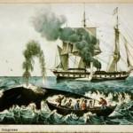 Whalers-150x150