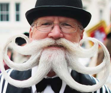 What Do Whisker Wars Have to Do With Real Estate Investing