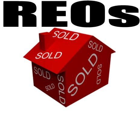 Real Estate Investing with REO